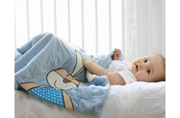 Какие одеяла лучше для новорожденных: некоторые советы